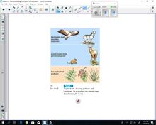 Science 10 Lesson 6 - Energy Movement in Ecosystems