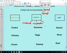 Science 10 Lesson 7 - Roles in Ecosystems